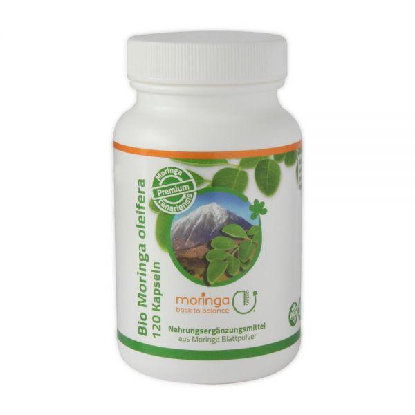 Premium: Bio Moringa Blattpulver Kapseln