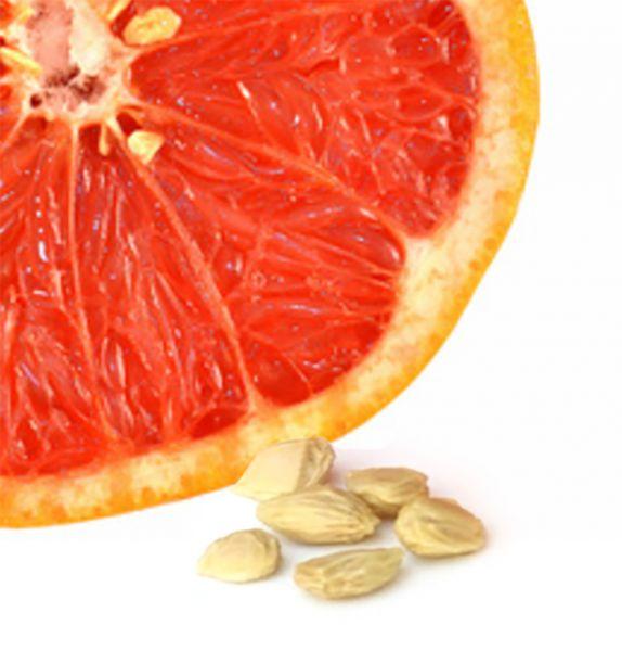 Grapefruitkernextrakt, 90 Kapseln