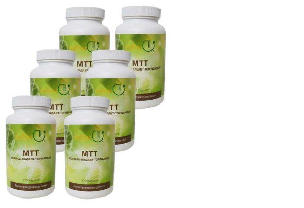 MTT-Kapseln - Jahresration 6 Dosen + Bacillus subtilis DSM 21097